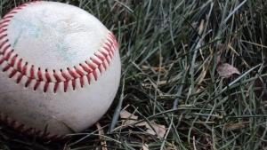 baseballingrass.jpg