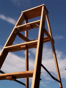 ladder5.jpg